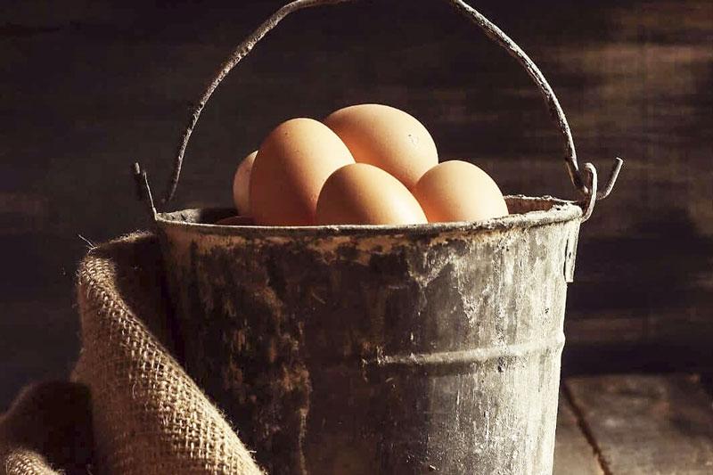 Agriturismo Toscano azienda agricola uova