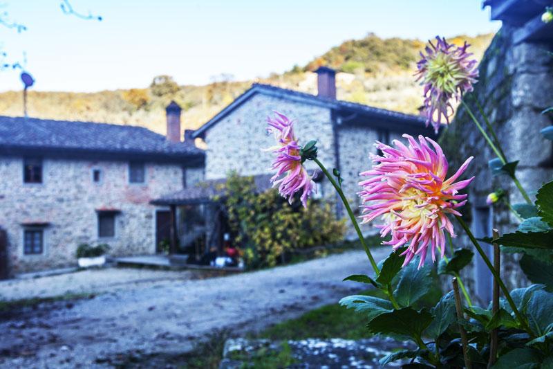 agriturismo toscano stile rustico fiori