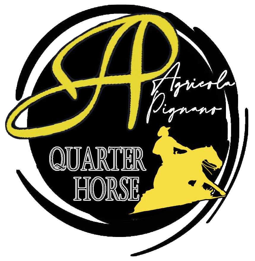 Logo maneggio cavalli reining