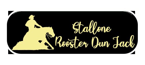 Pulsante maneggio cavalli reining