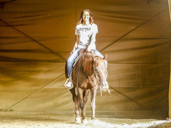cavallo maneggio equitazione allevamento puledri