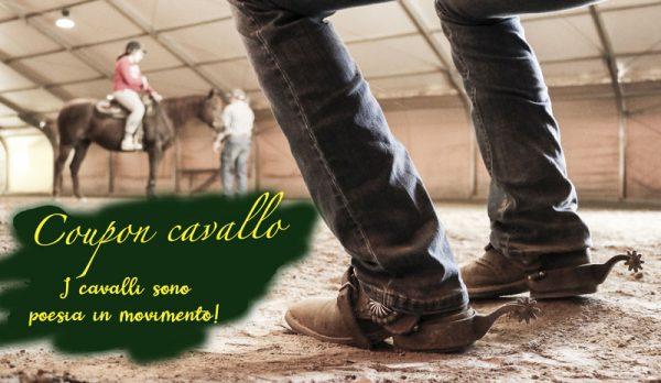 Offerte speciali cavallo maneggio